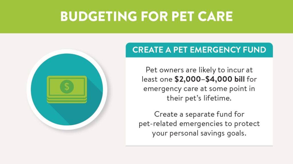 Create a pet emergency fund