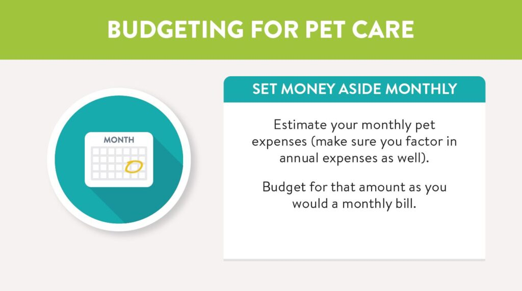 Budgeting for pet care